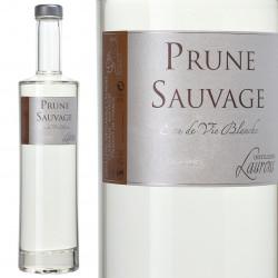 Prune Sauvage